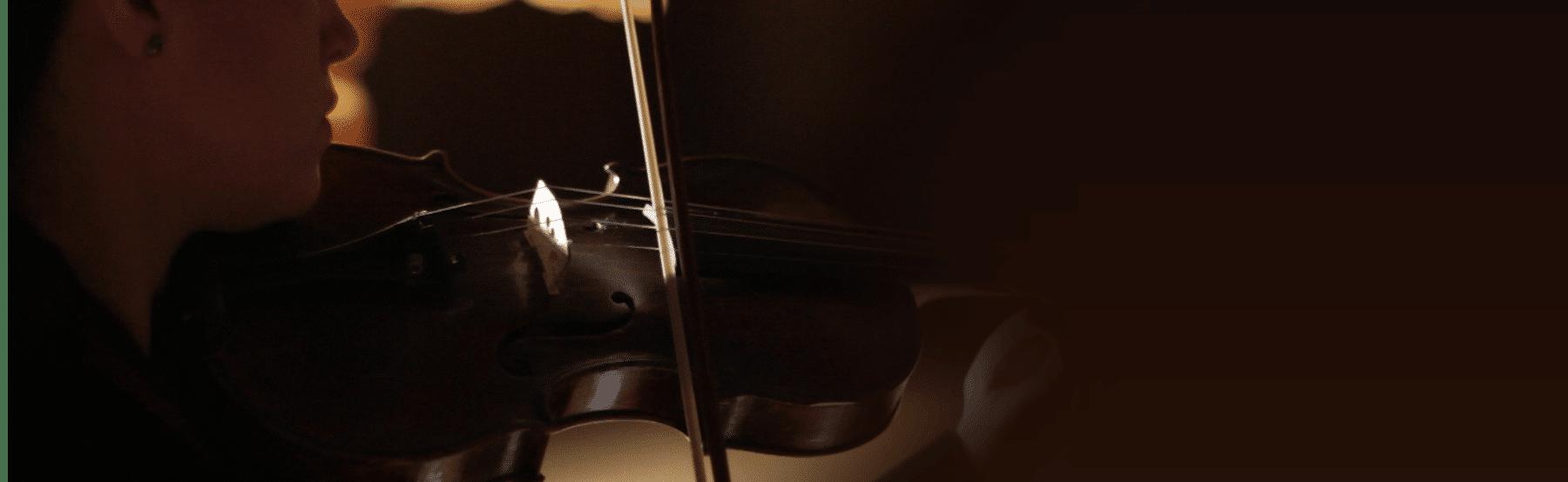 Trio Broz: Solo Violin | FluffyAudio